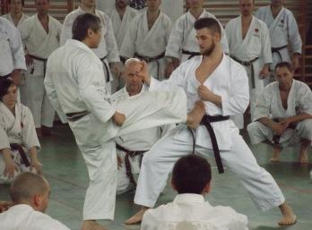 Sawada mester